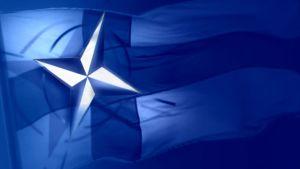 Naton merkki ja suomen lippu