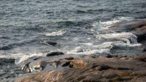 Tyrskyjä rantakalliolla.