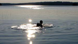Poika ui järvessä. Ilta-aurinko heijastaa veden pinnalta.