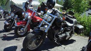 Harley Davidson -moottoripyöriä.
