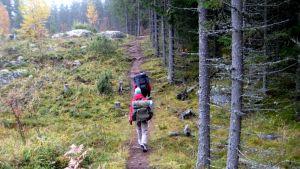 Kaksi retkeilijää kävelee metsäpolkua pitkin.