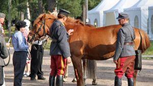 sotilaspukuisia miehiä tarkastelemassa hevosta