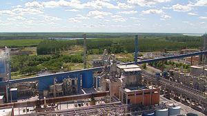Veracelin tehdas Brasiliassa