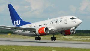 SAS:n Boeing 737 laskeutuu.