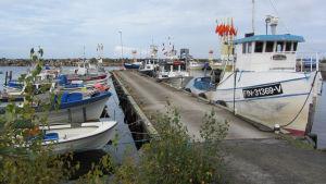 Kuvassa venelaituri ja kalastusveneitä kiinnittyneenä siihen