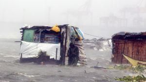 Filippiiniläinen mies tutkii taifuuni Nesatin aiheuttamia tuhoja Basecon alueella Manilassa.