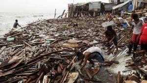 Miehet keräävät vedestä lankkuja ja muuta myrskyn repimää roskaa, jota on laajana mattona rannassa.