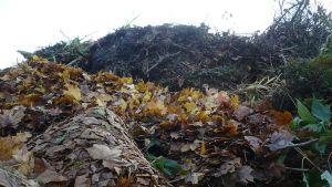 Lehtikasa Karanojan jätteenkäsittelyalueella Hämeenlinnassa