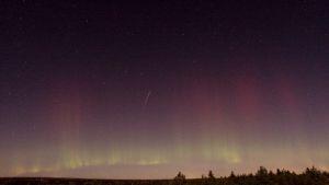 Tähdenlento ja revontulia Skekarsbon kansallispuistossa Ruotsissa 8. lokakuuta.