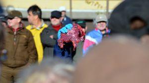 Karhunlihahuutokaupasta Leppävirralla. Lihat myytiin noin kilon paloissa.