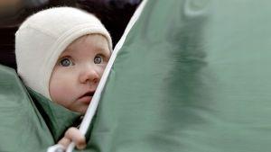 Vauva katselee lastenvaunun kuomun takaa.