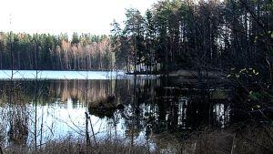 Syksyinen järvenrantamaisema