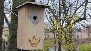 Turun kulttuuripääkaupunkilogolla varustettu linnunpönttö.