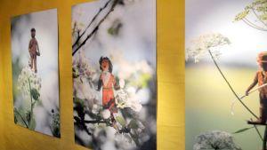 Kuvataidetta puuhahmoja hyödyntäen esillä ITE-taiteen näyttelyssä.