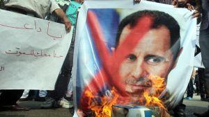 Syyrialaiset mielenosoittajat polttavat presidentti Bashar Al-Assadia esittävää julistetta Arabiliiton päämajan edustalla Kairossa 12. marraskuuta 2011.