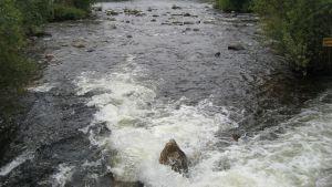 Heinäveden Kermankoski