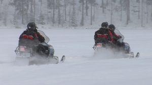 Moottorikelkkailijat ajavat Kallavedellä lumen pöllytessä.