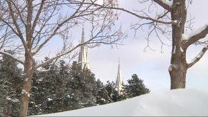 Luterilainen kirkko pilkistää puiden takaa.