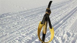 Oulun Hiihtojen nimellä 1889 alkanut Tervahiihto hiihdettiin vuosisadan vaihteeseen saakka meren jäällä.