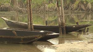 Niger-joen suistoa. Veneitä. Öljyn pilaamaa vettä.