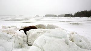 jäätynyt meri Kotkan edustalla