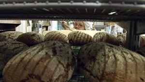 Leipuri nostelee leipiä uunista hyllyyn.