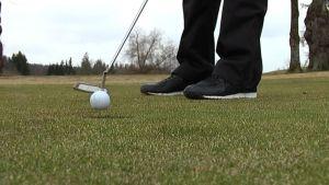 Golfaaja puttaamassa
