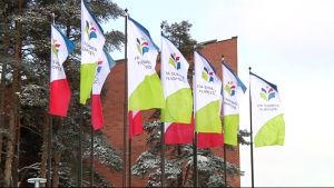 Itä-Suomen yliopiston liput liehuvat Joensuun kampuksella.