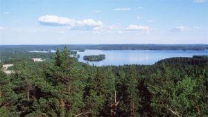 Anne Mikkanen ehdottaa, että suurkunnan syntyessä keksittäisiin ainakin uusi nimi Vesijärvelle.
