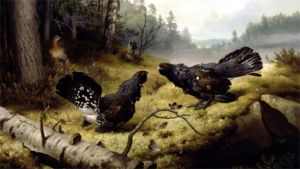 Taistelevat metsot kuuluu Ateneumin peruskokoelmaan.