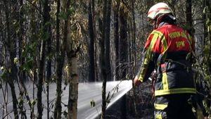 Vahdolla paloi metsää vuonna 2008 useita hehtaareja.