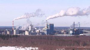Botnian tehtaat Kemin Pajusaaressa.
