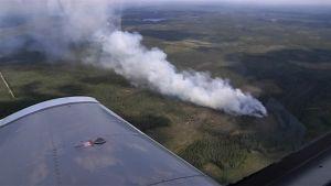 Metsäpalojen valvontalennolla havaittu savupatsas.