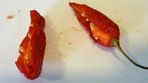 Chili maustekasvi