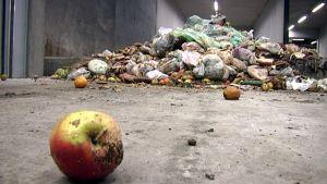 Biojätettä jätteenkäsittelylaitoksella.