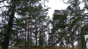 Kellovuoren näkötorni Virolahdella.