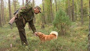 Metsästäjä ja koira metsässä.