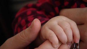 Lapsen sormet pitävät kiinni aikuisen etusormesta