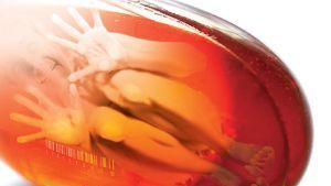 Kuva Rokumentin julisteesta.