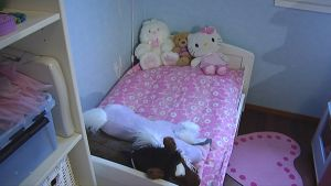 Tytön sänky ja nalleja.