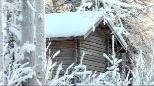 Luminen aitan pääty metsän laidassa.