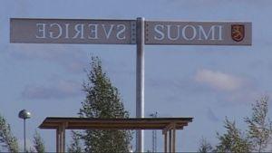 Rajakyltti Suomen ja Ruotsin rajalla Torniossa.