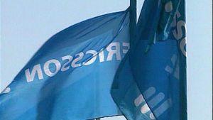 Ericssonin lippuja salossa