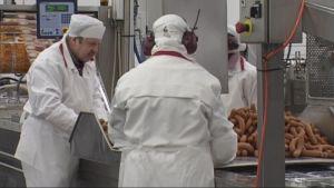 Portin Mikkelin tehtaalla valmistetaan grillimakkaraa.