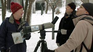 Presidentti Tarja Halonen ja BirdlLifen jäseniä bongaamassa lintuja Mäntyniemen pihalla.