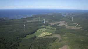 EPV Tuulivoima Oy:n havainnekuva Raippaluotoon suunnitellusta tuulivoimapuistosta.