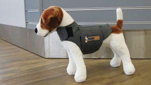 Koiralelu painepaita päällä.