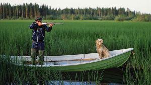 Metsästäjä tähtää haulikolla riistaa veneestä, koira istuu veneen kokassa