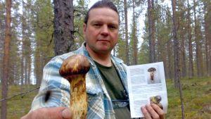 Kari Kilpimaan kädessä matsutake-sieni