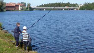 Pojat onkivat Oulujoella